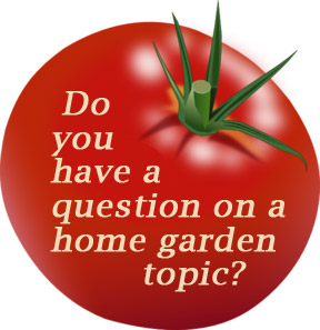 Do you have a question on a home gardening topic?